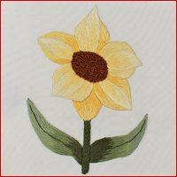 Daffodil Silk Shading